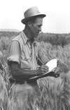Small_list_dsh-borlaug