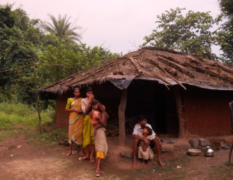 Image result for maharashtra adivasi forest land
